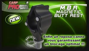 Support de canne magnétique