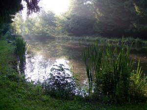 2013- 8 juillet 004