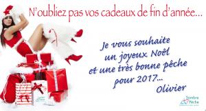 meilleurs voeux pour 2017 bon noël